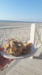 bord met schelpjes